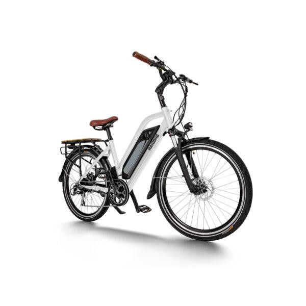 HAIDONG Warrior Electric Bike-white1