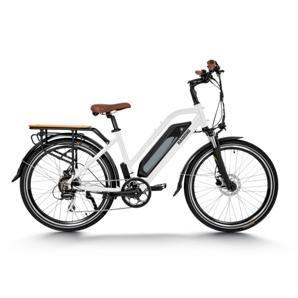 HAIDONG Warrior Electric Bike-white2