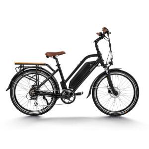 HAIDONG Warrior Electric Bike3