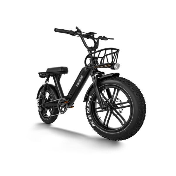HAIDONG Challenger Electric Fat Bike2