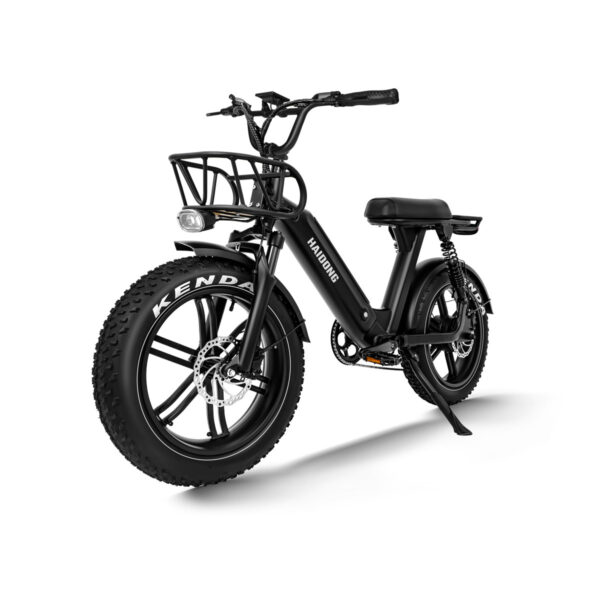 HAIDONG Challenger Electric Fat Bike3