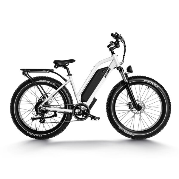 HAIDONG Ninja Electric Fat Bike1
