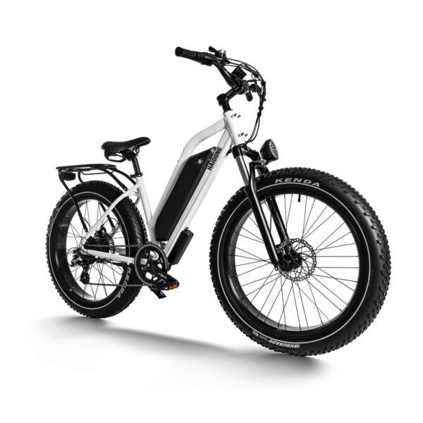 HAIDONG Ninja Electric Fat Bike2
