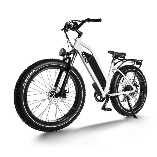 HAIDONG Ninja Electric Fat Bike3