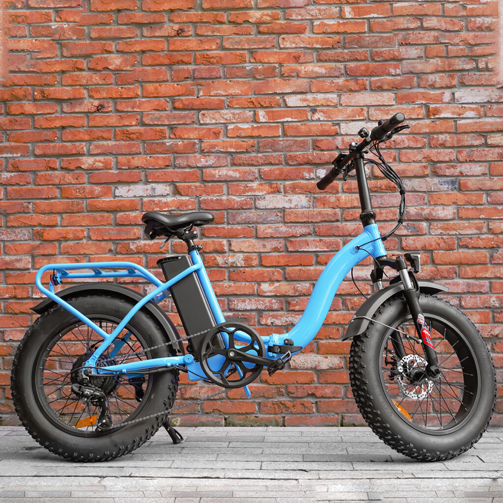 Folding Fat Tire ebike-Haidong bike