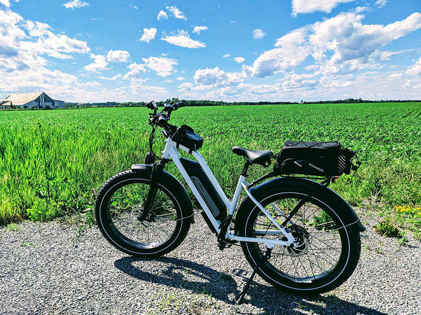 10 Tips to Choose the Best E-bike Manufacturer in China 3