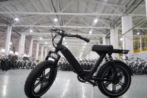 6-Things-You-Must-Know-About-China-E-bike-Wholesale