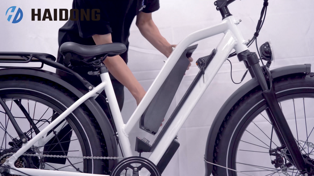 The Differences Between American and China E-bikes-Haidong ebike 1