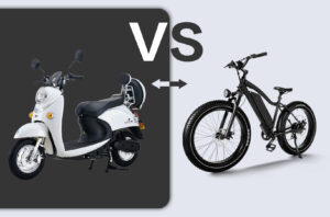 The Differences Between Chinese and American E-bikes-Haidong ebike 1